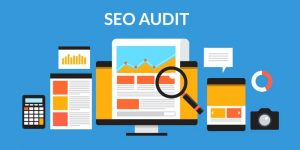 Website audit, shows technical issues,